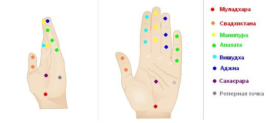 Особенности кожно-гальванической реакции биологически активных точек руки выстроено в приборе Аурабук в соответствии...